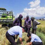 Zoomlion Agricultural Machinery celebra el Día Mundial de la Alimentación 2021 con acciones para impulsar la productividad alimentaria global